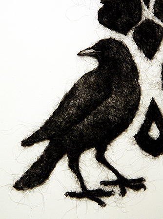 Damask Crow