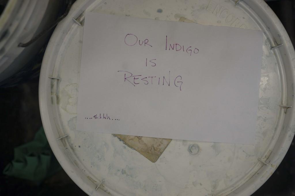 indigosleeping